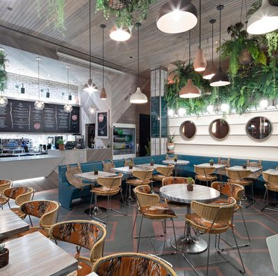 Why blinds are perfect for your cafe